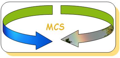 cfs und mcs - lebenszeit-cfs